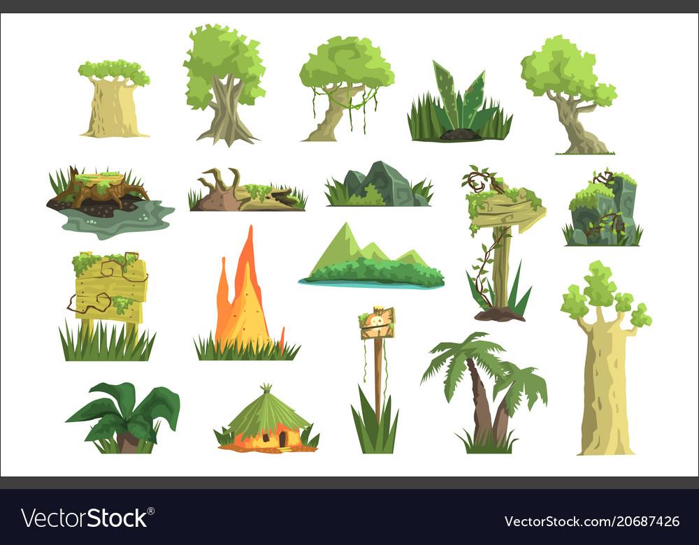 Tropical jungle landscape set design elements for