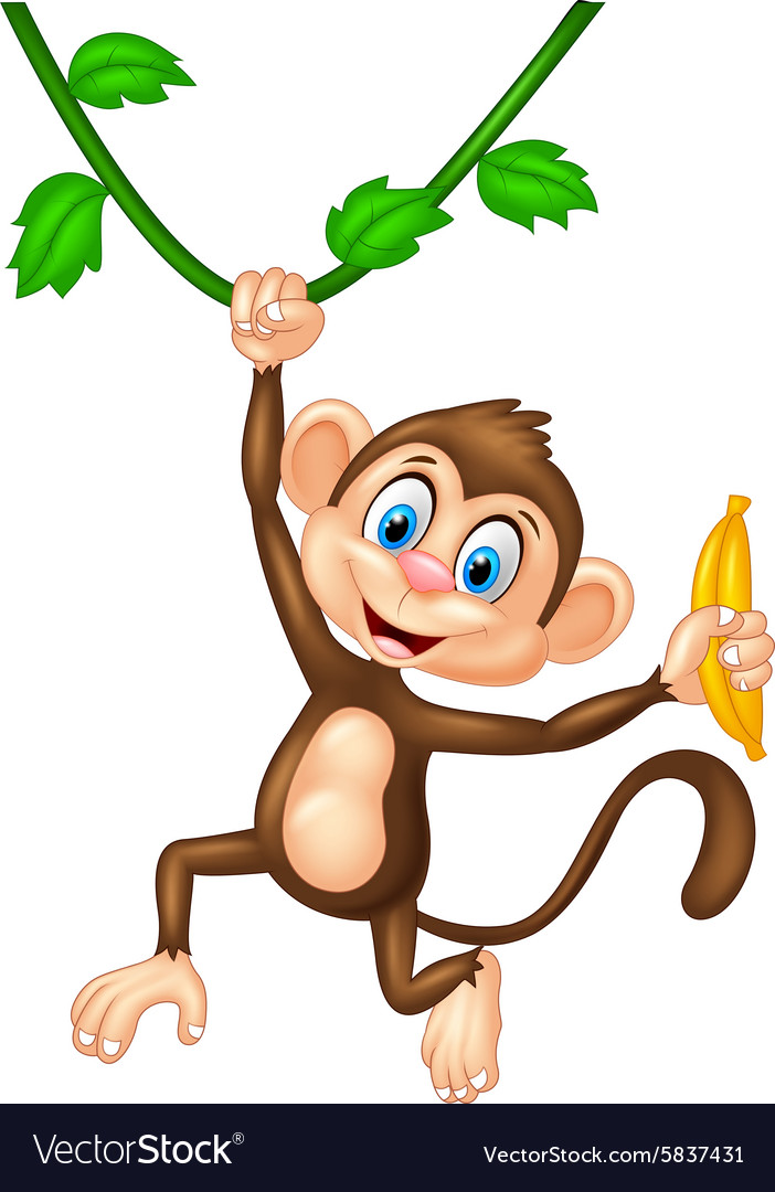 cartoon monkey holding banana fruit royalty free vector