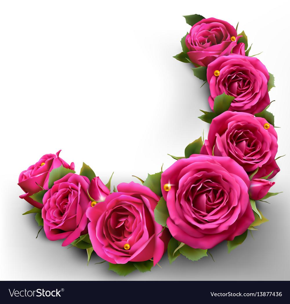 Roses flowers festive border congratulation best Vector Image