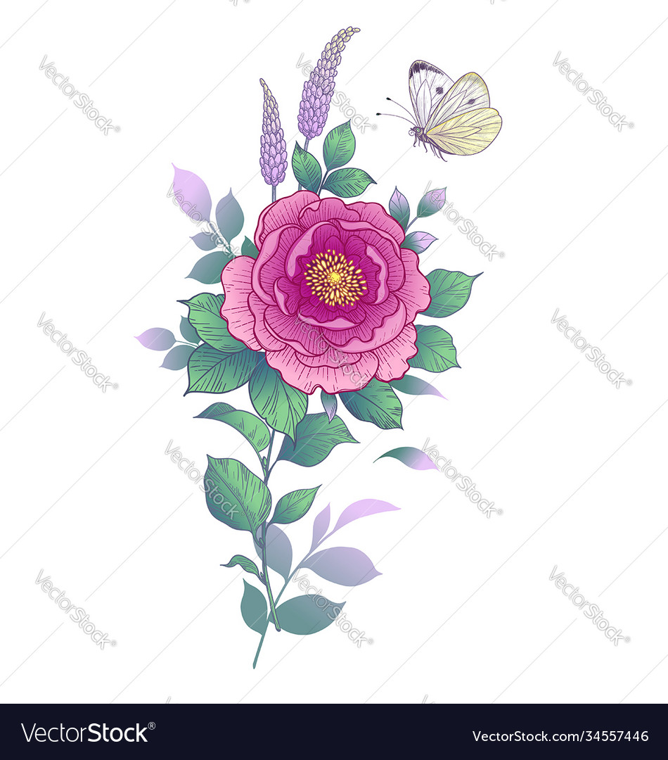 Hand drawn pink flower and butterfly