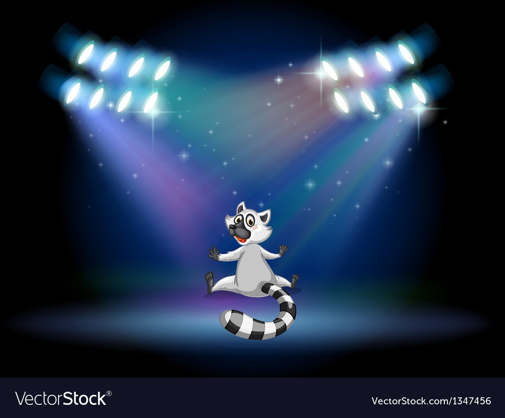A lemur in the middle of the stage
