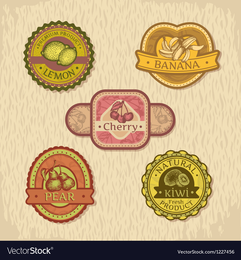 Abstract vintage style fruit label vector image