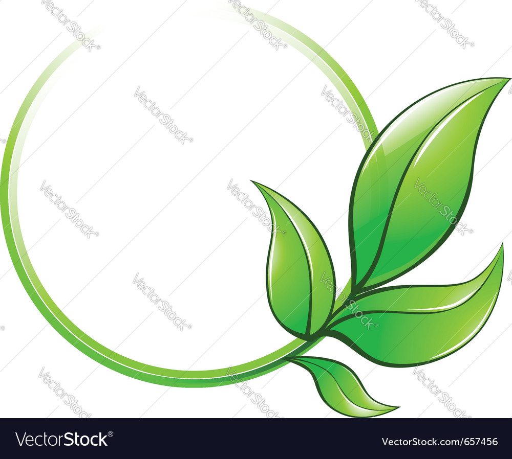 Green leaves frame vector image