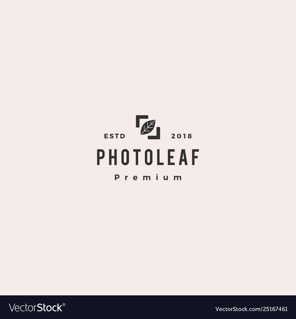 Photo leaf logo icon
