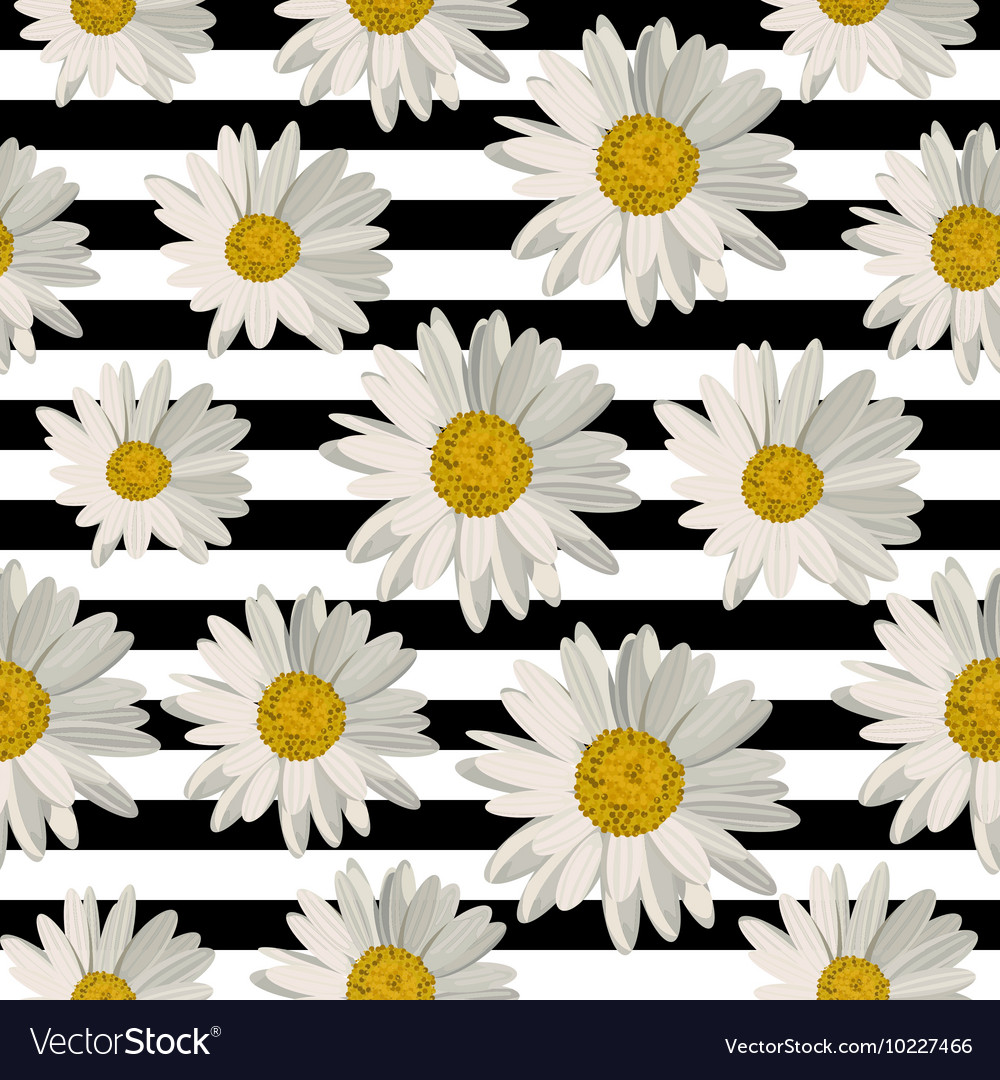 Seamless Pattern With Daisy Flowers Royalty Free Vector