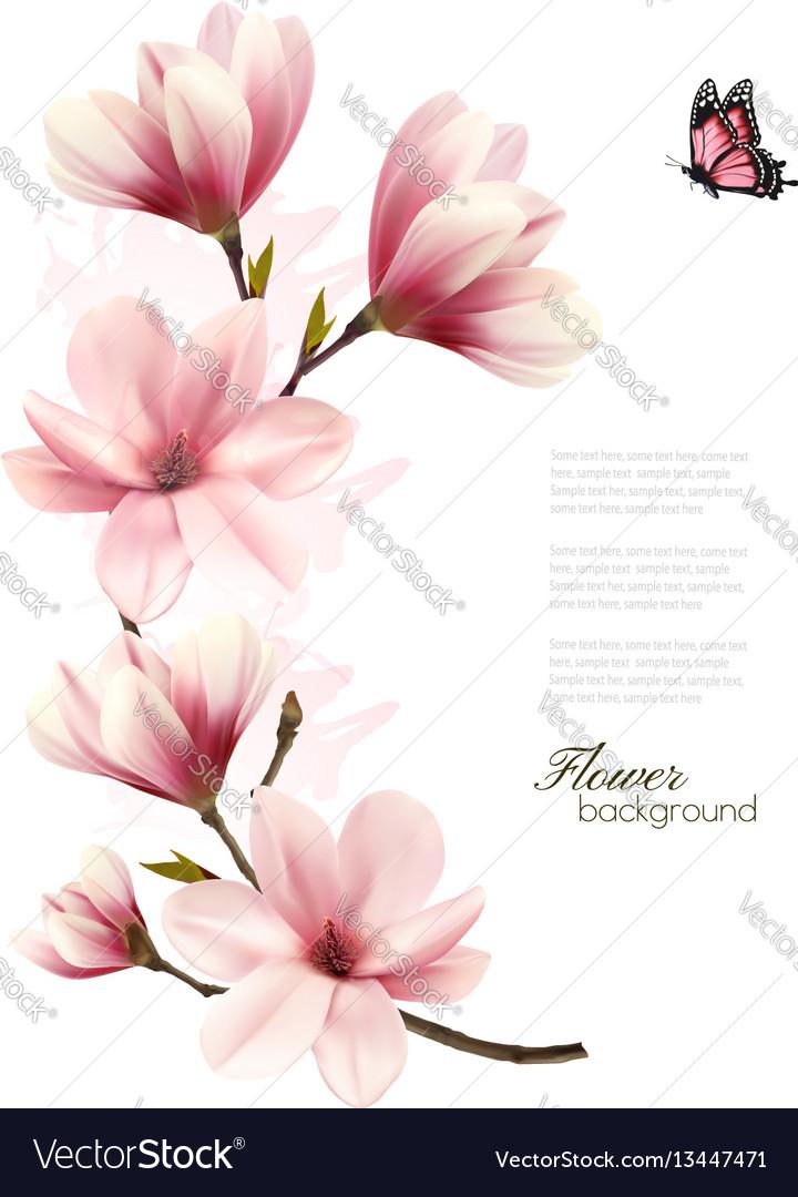 Beautiful pink magnolia background