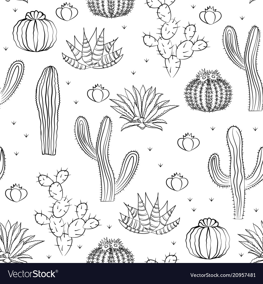 Hand drawn succulent ornament seamless pattern