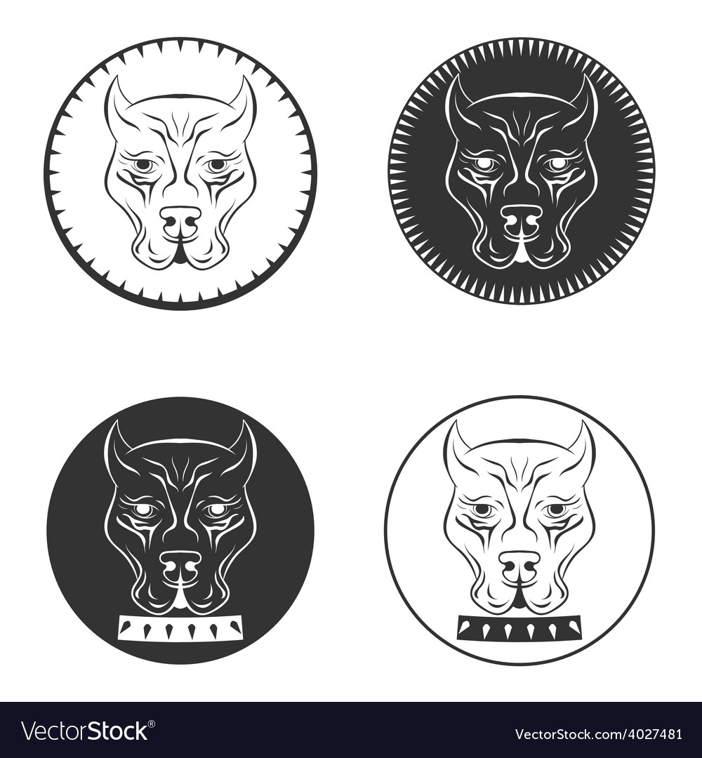 Set Pit bull terrier logo Dod face with collar vector image