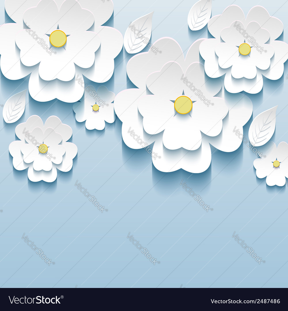 3d flowers sakura wallpaper royalty free vector image