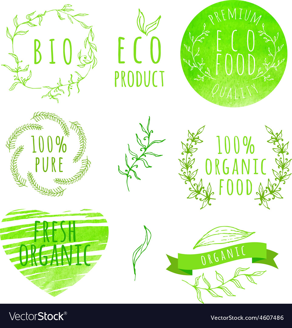 Set of watercolor organic food labels Eco product vector image