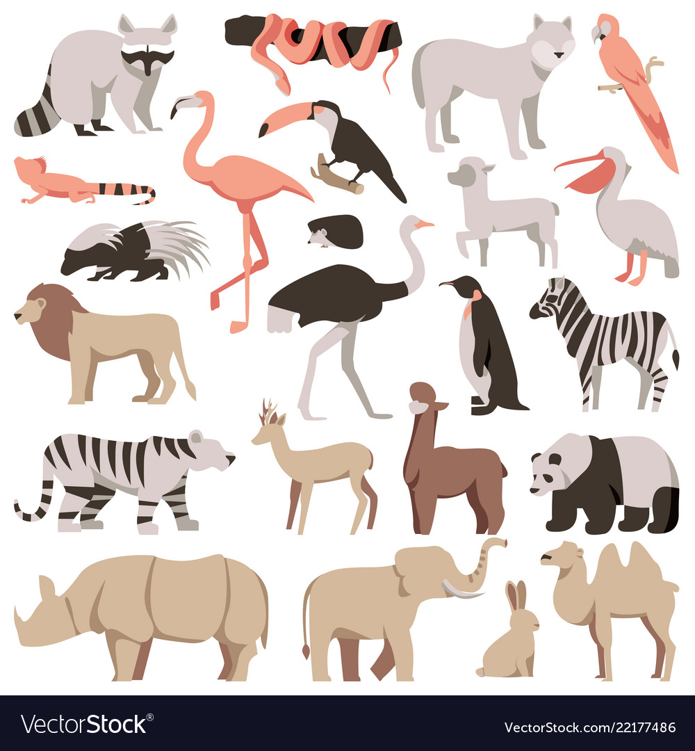 Zoo flat animals set tropical and exotic wild
