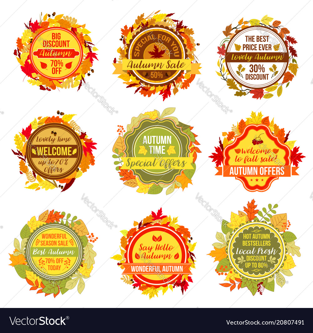 Autumn or fall sale leaf foliage icons