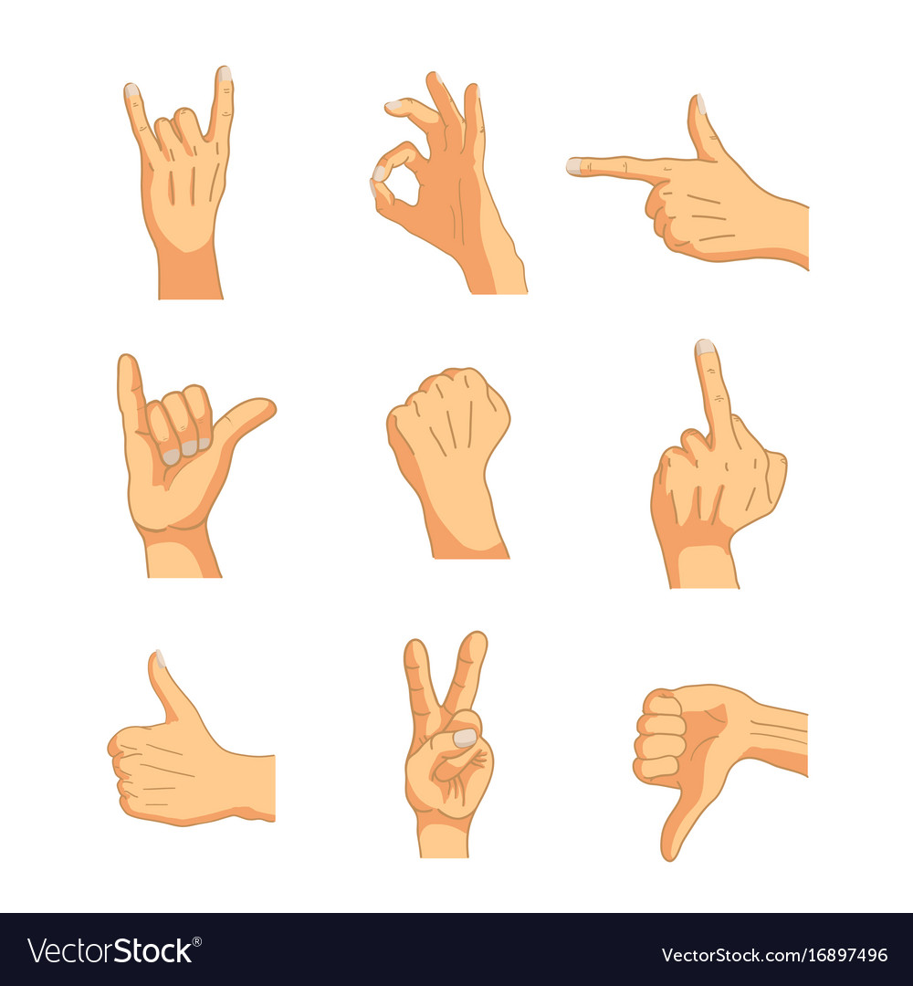 Common cartoon hand signs isolated on white vector image