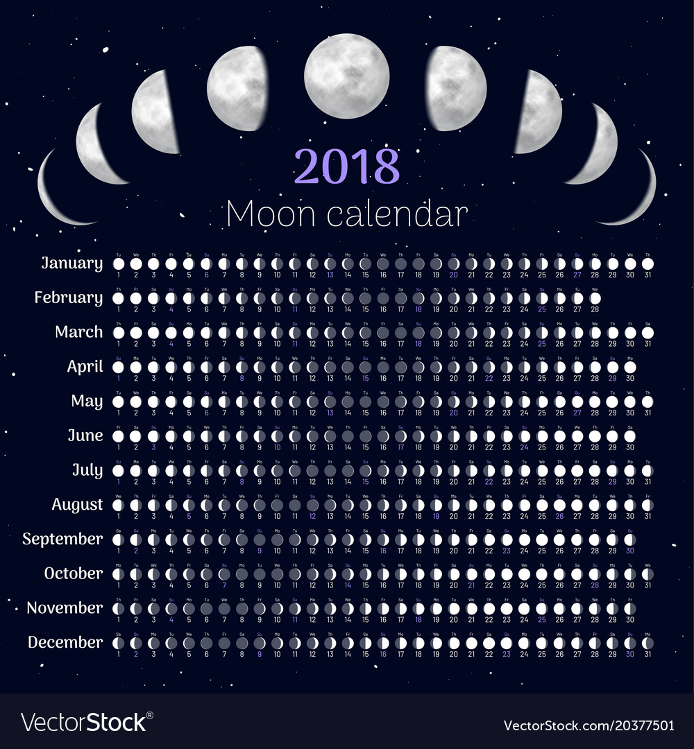 Moon calendar 2018 year Royalty Free Vector Image