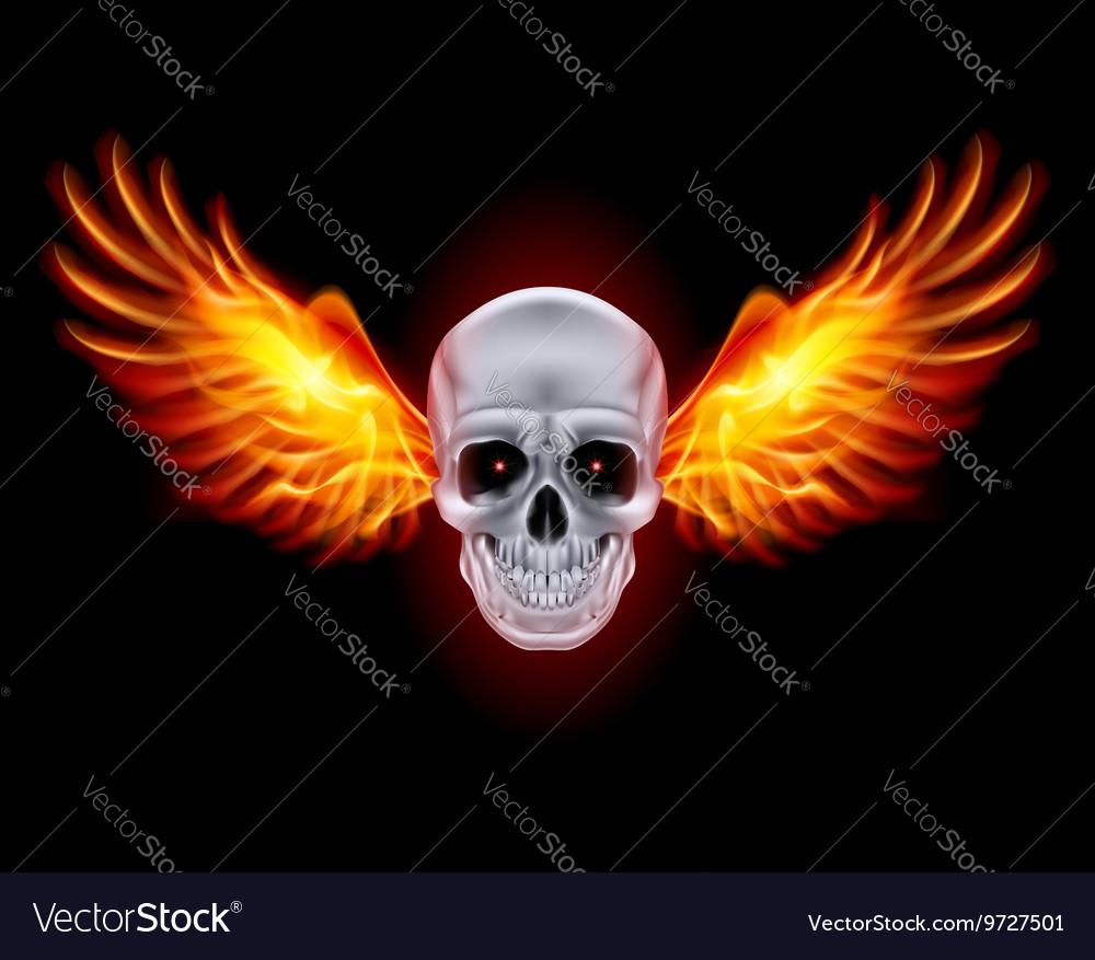 Mysterious dark Chrome metal skull wings 01