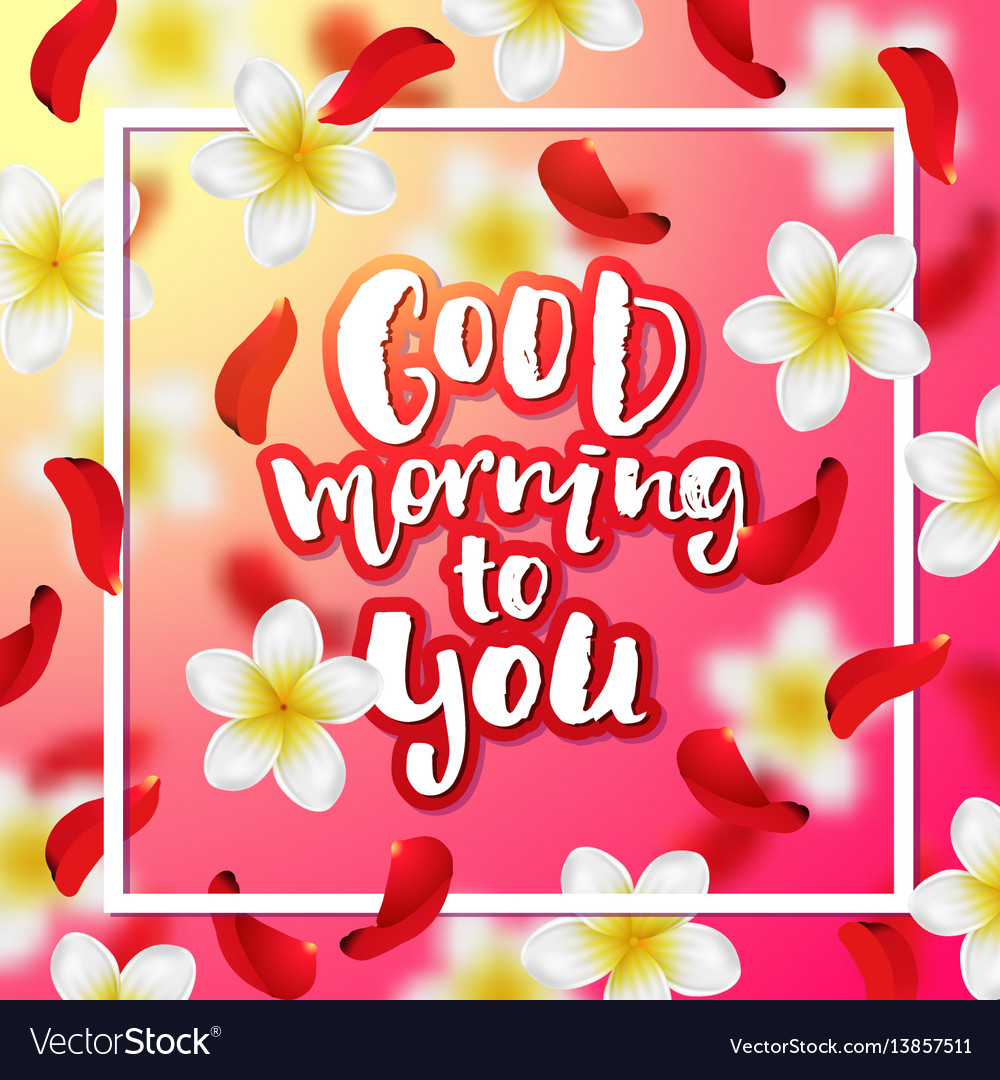 Hand Drawn Calligraphy Good Morning To You Vector Image