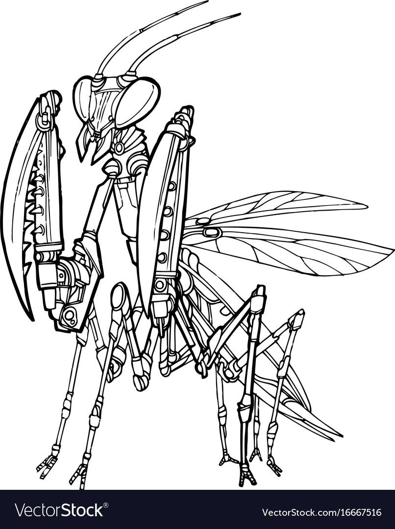 Mantis Robot Royalty Free Vector Image Vectorstock