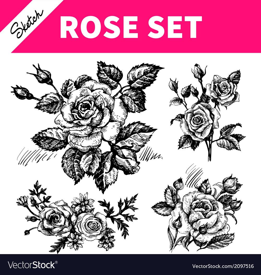 Sketch floral set