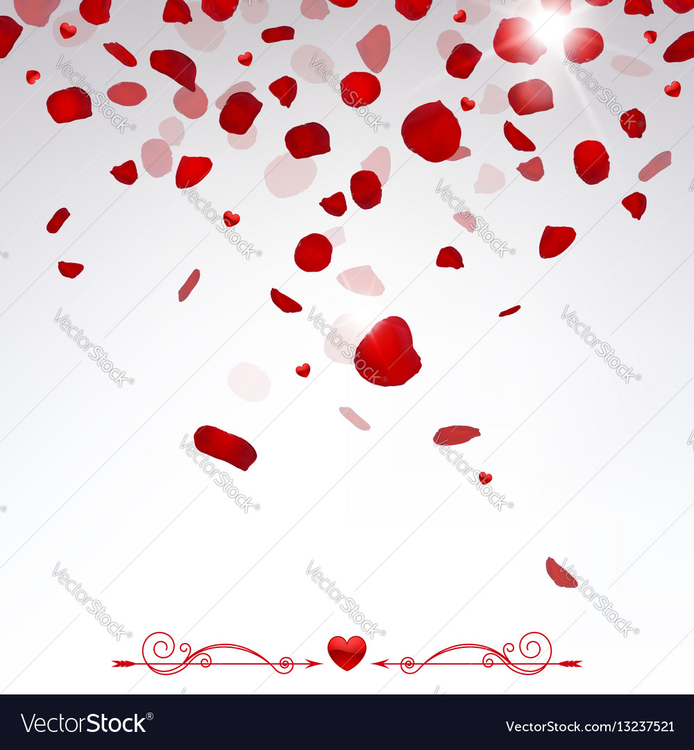 confetti falling rose petals royalty free vector image