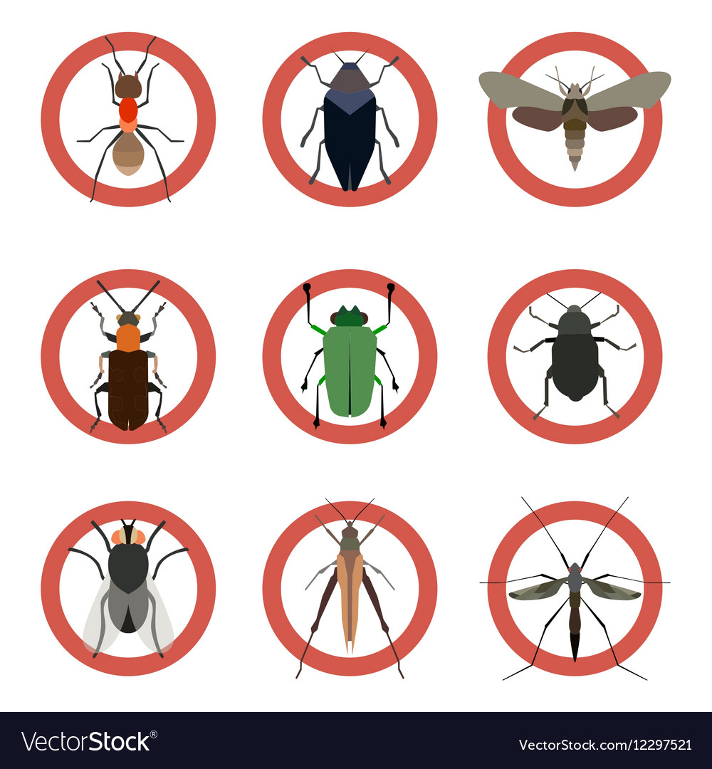 Pest insects control icons Collection danger ants