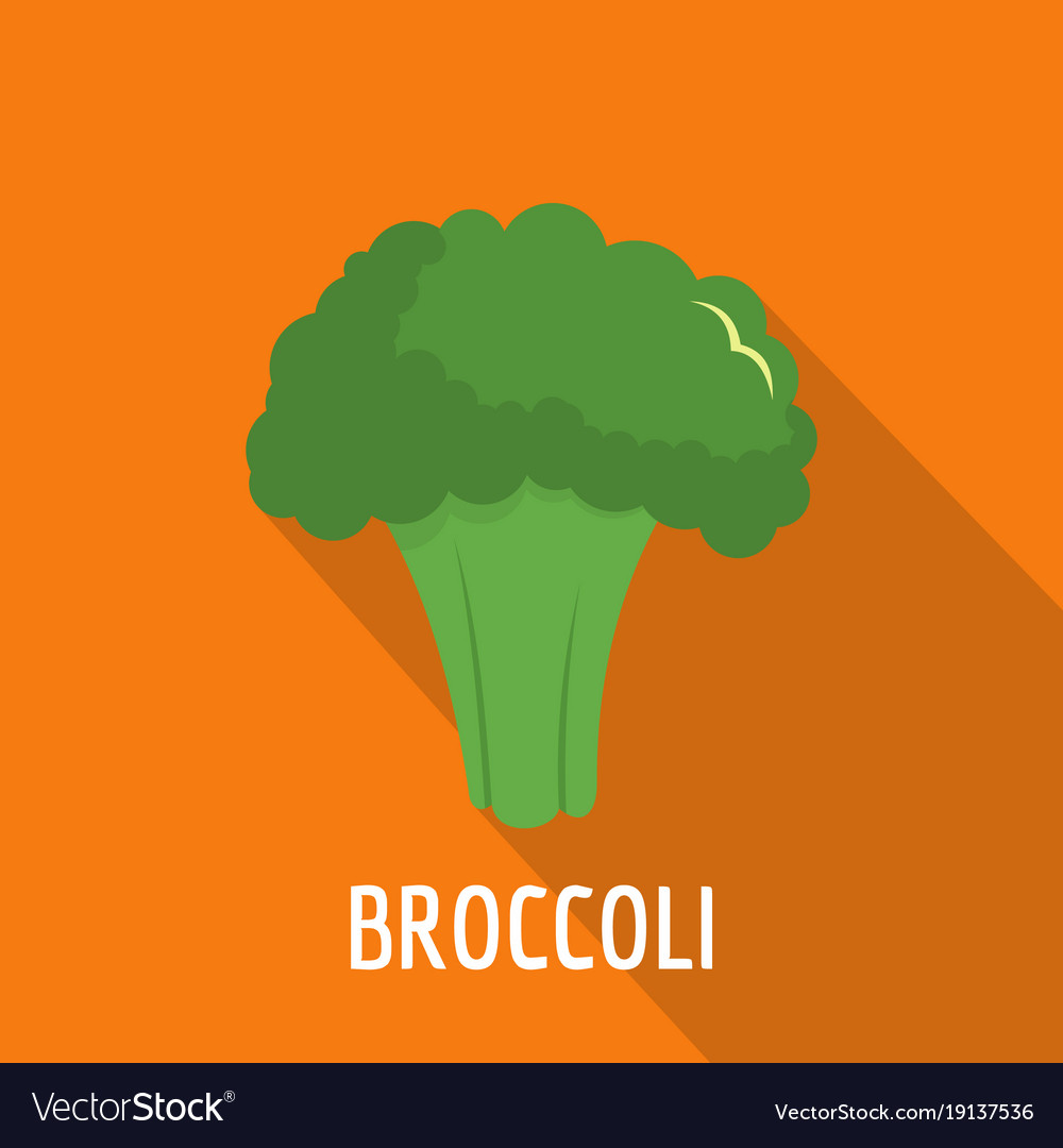 broccoli icon flat style royalty free vector image broccoli icon flat style royalty free vector image