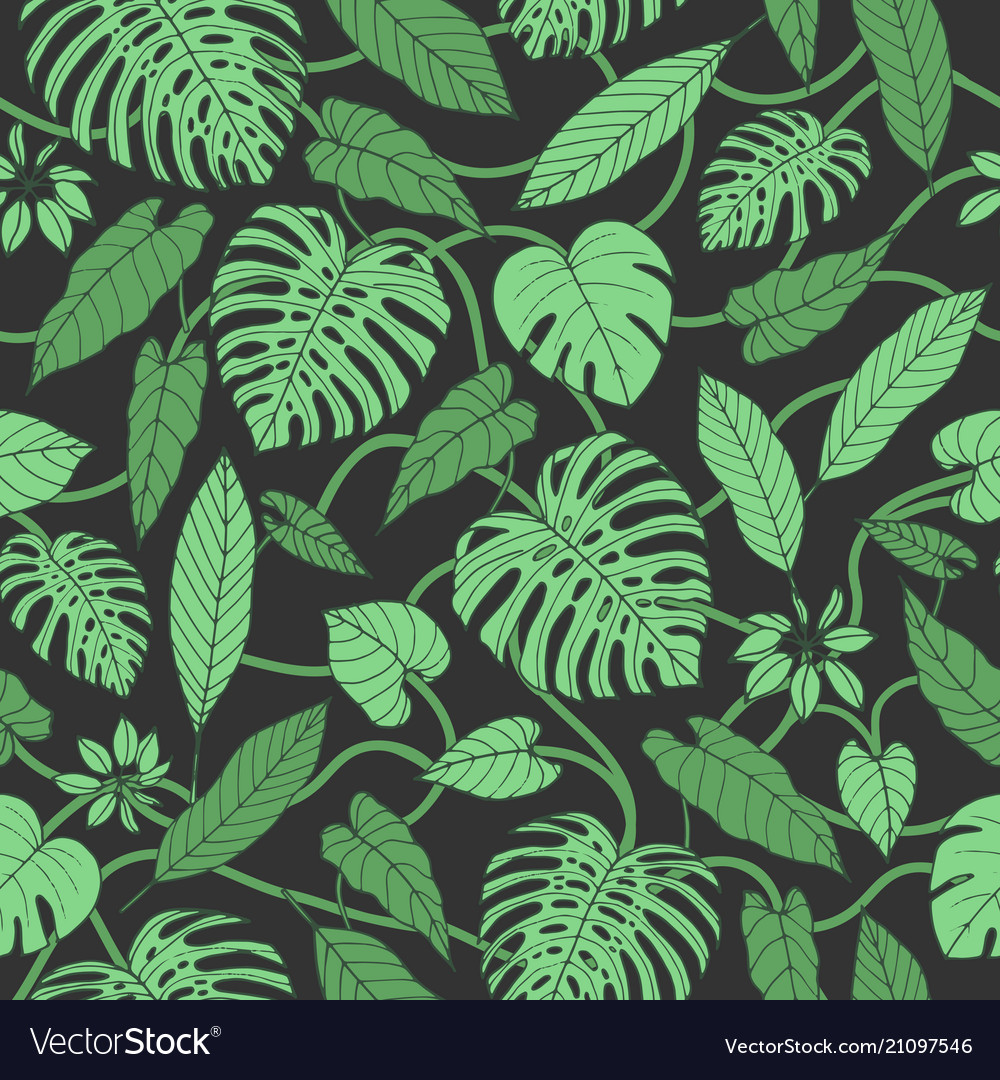 Tropical pattern with monstera leaves