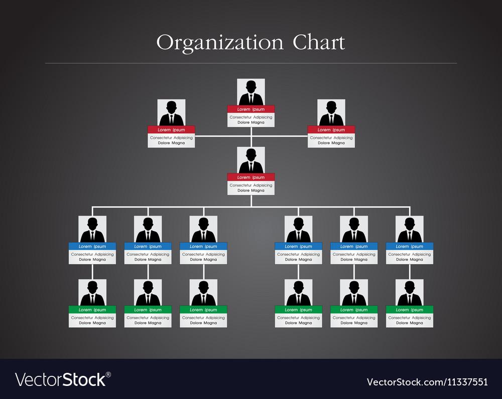 Organization Chart Infographics 2
