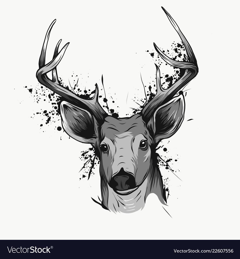Deer head on white hand drawn vintage