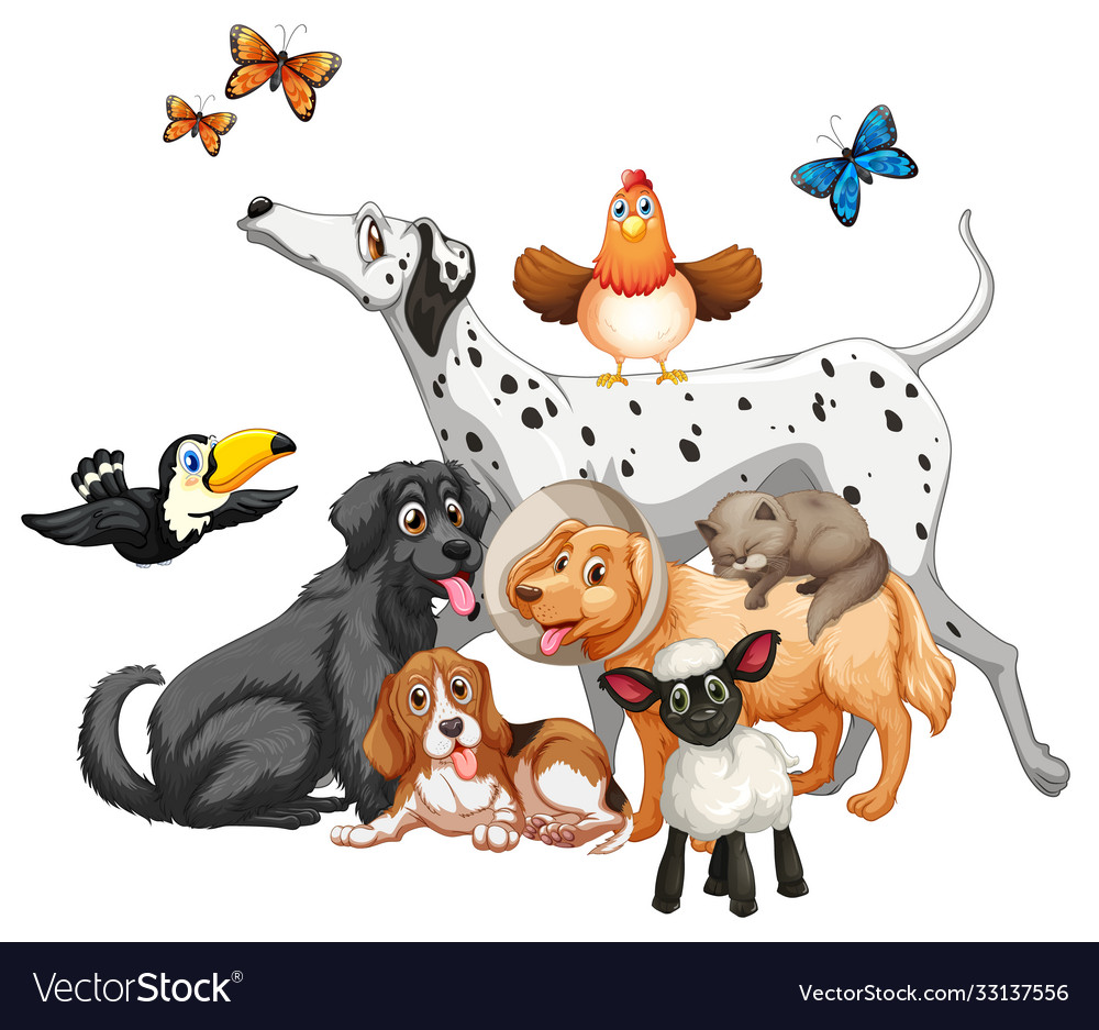 Group cute animals cartoon character isolated