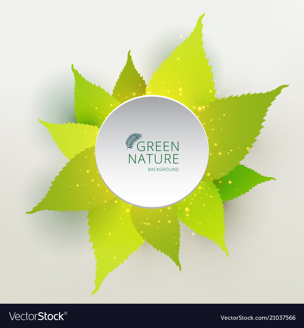 Green leaves nature concept with label circle