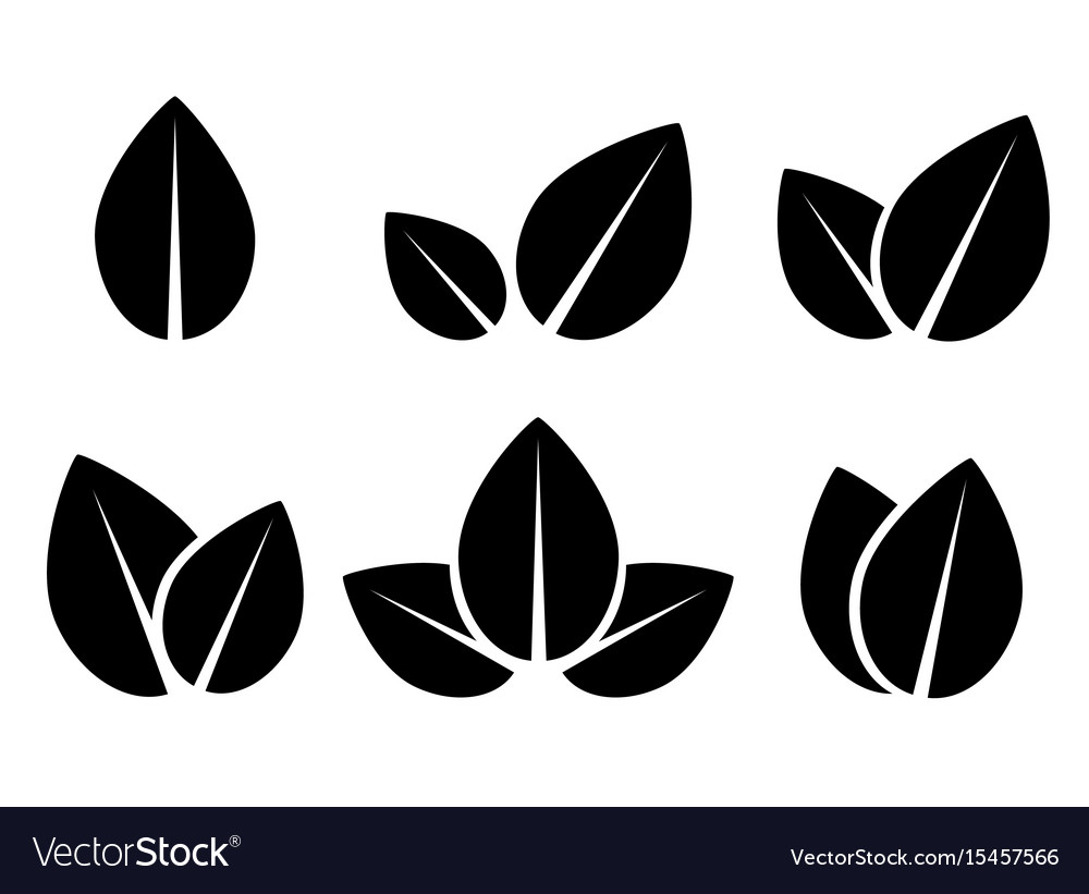 Set of black leaf icons