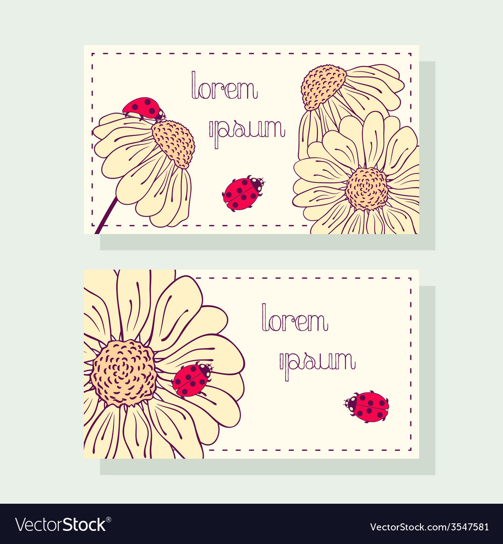 Business card set with ladybug and daisy vector image colourmoves
