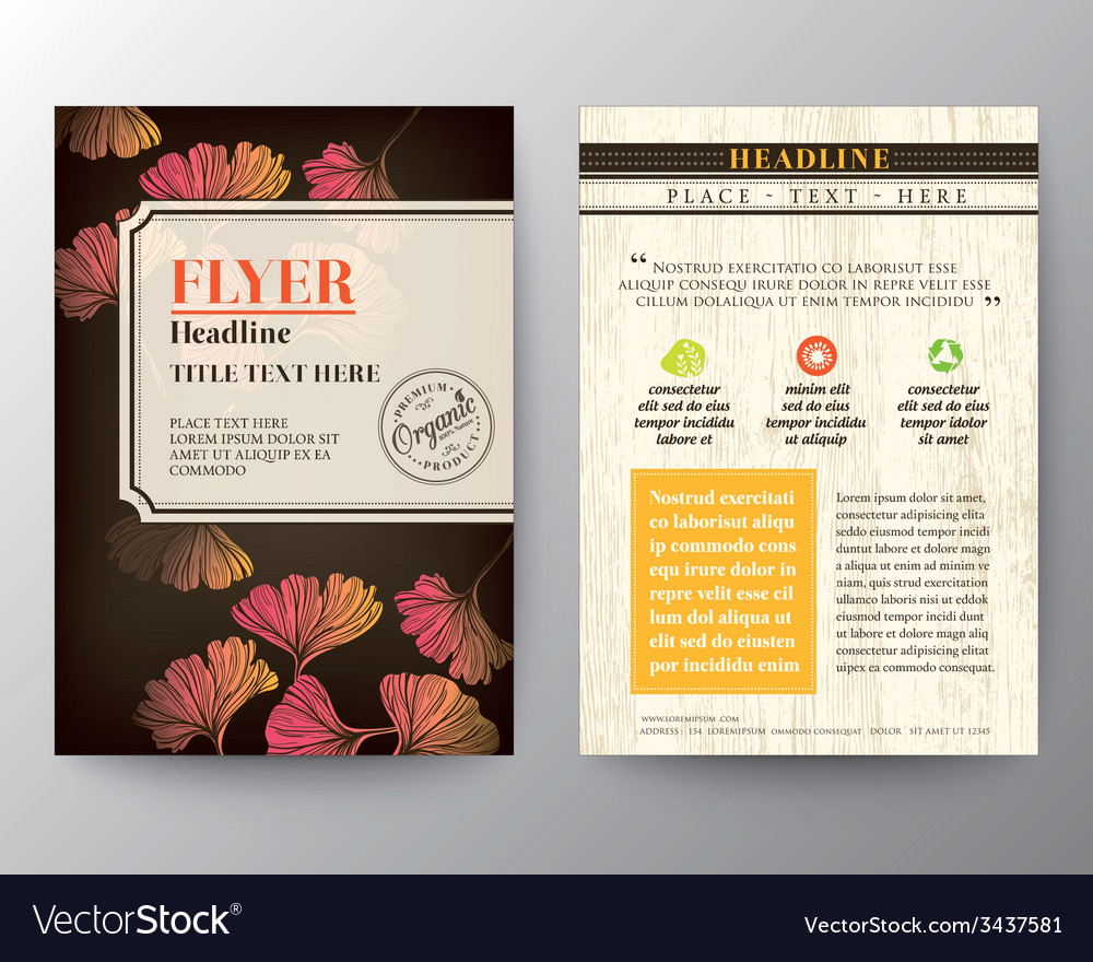Ginkgo leaf background graphic design Layout vector image