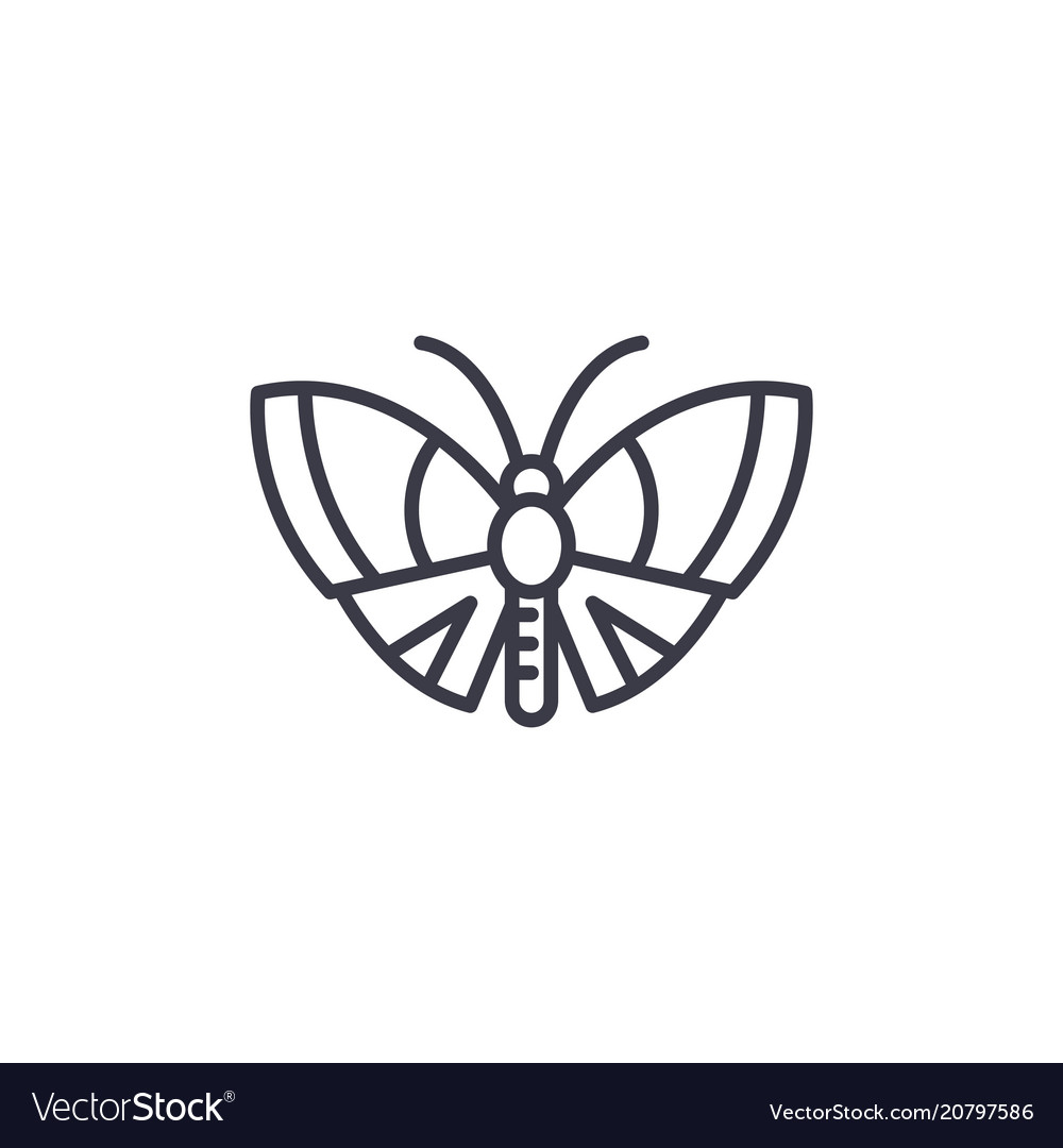 Butterfly line icon sign on