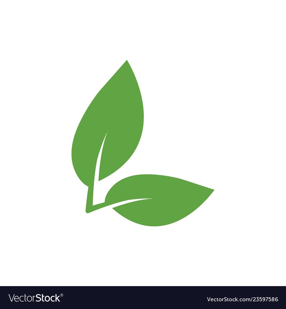 Green leaf icon graphic design template