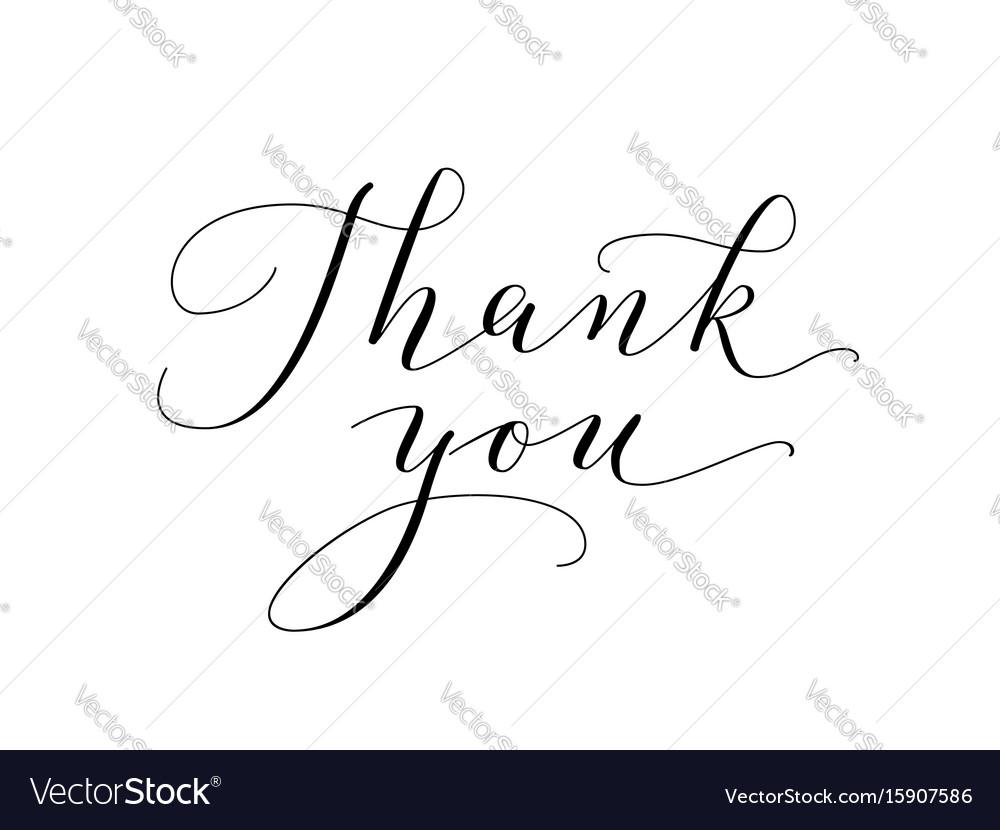 Thank you words hand written custom calligraphy vector image