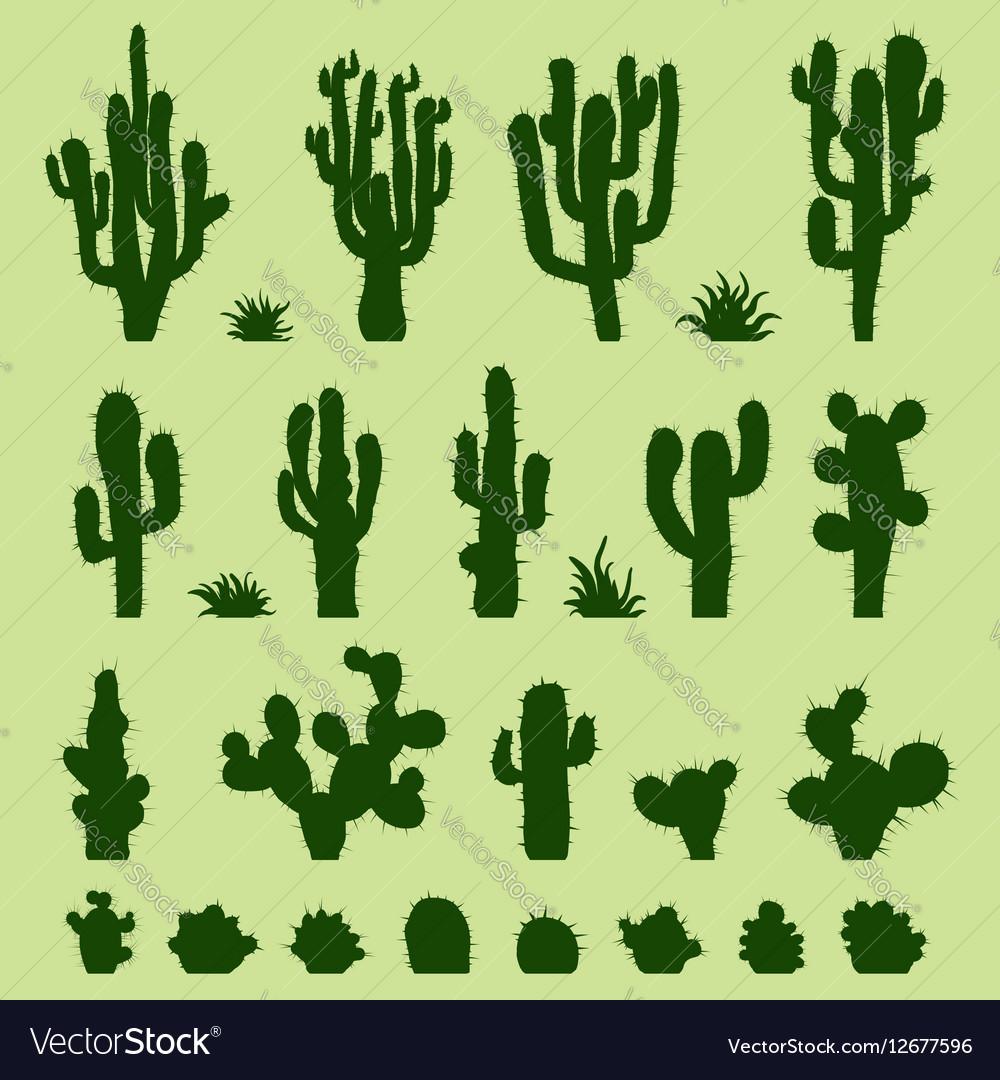 Set of green cacti