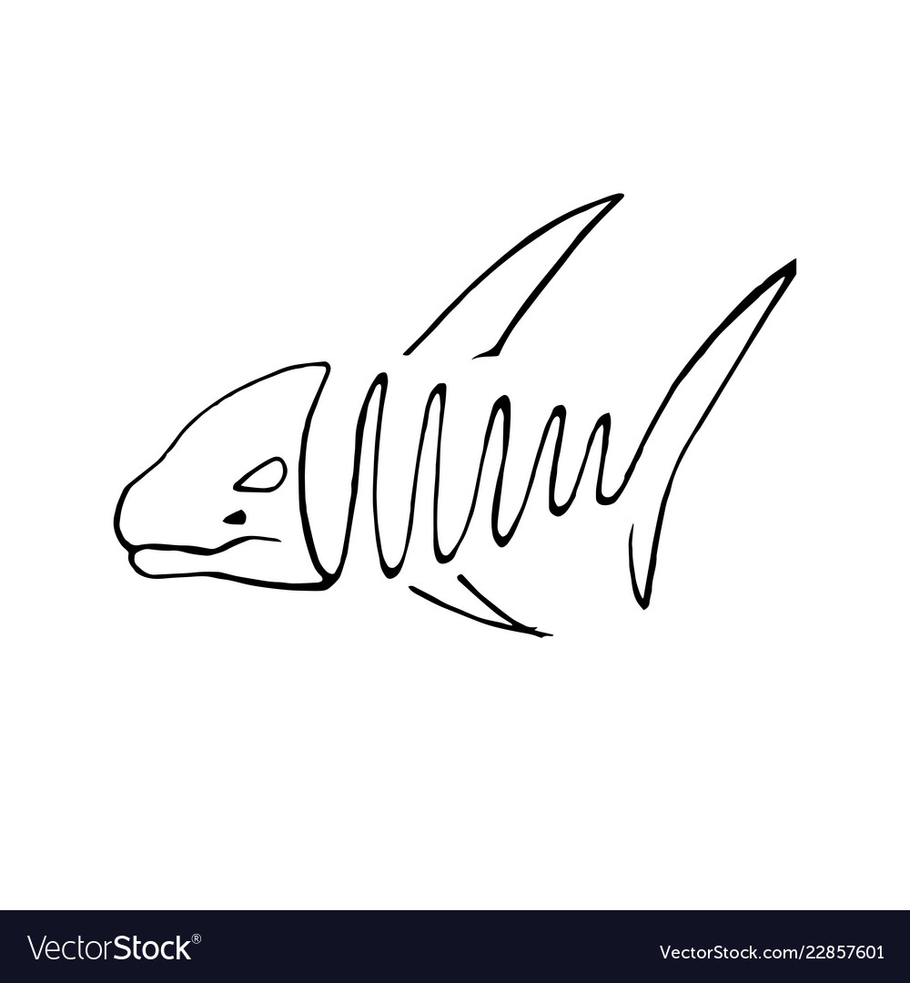 Abstact hand drawing of fish in line art style