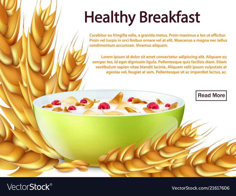 Healthy breakfast banner or background