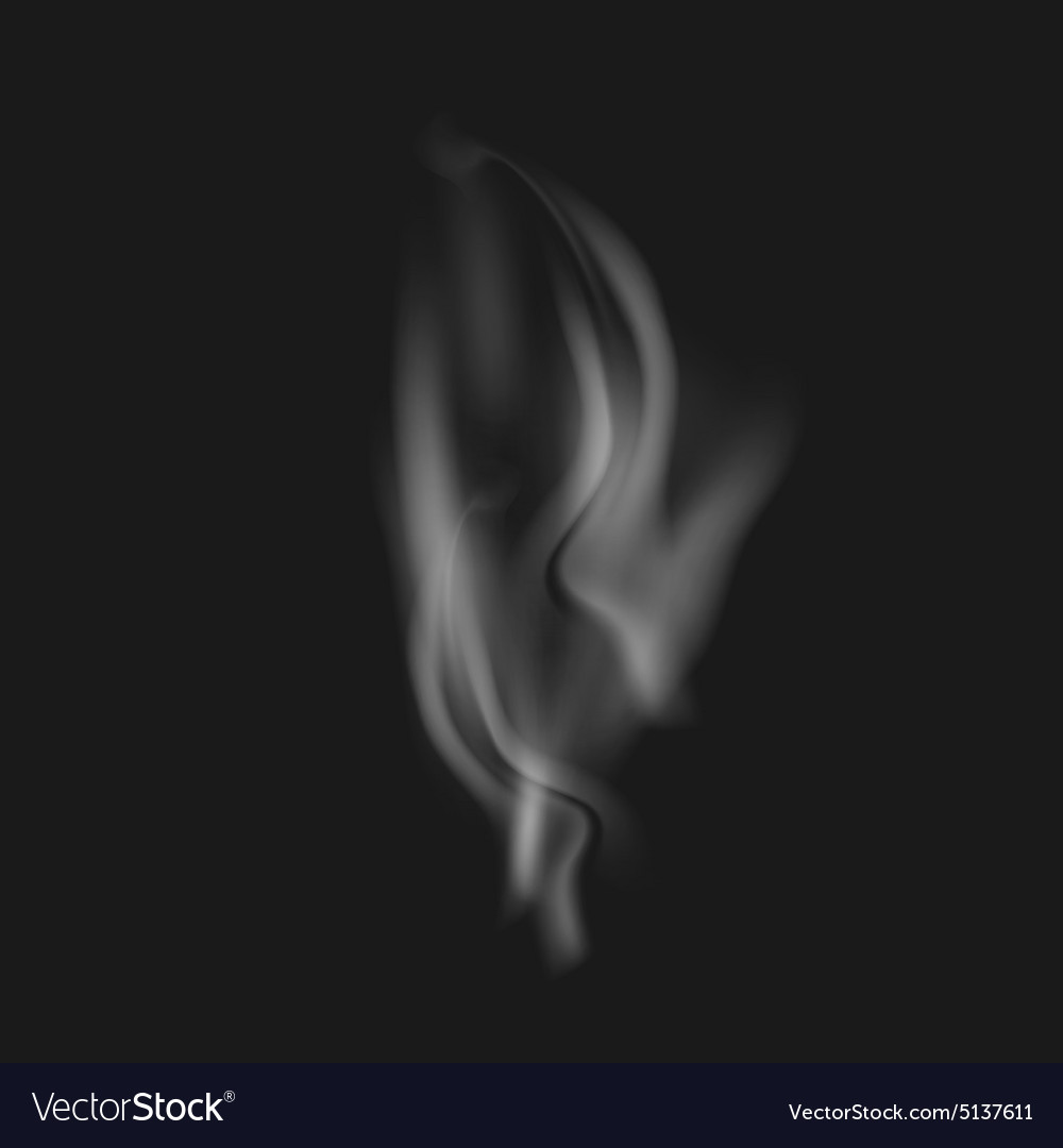 Realistic White Smoke On A Black Vector Image