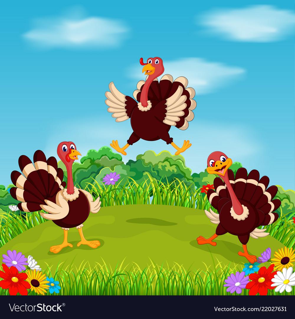Dashing turkey bird playing and flying