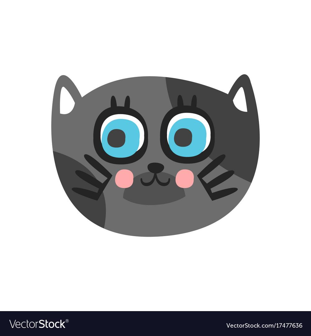 Cute grey cat head with beautiful blue eyes funny