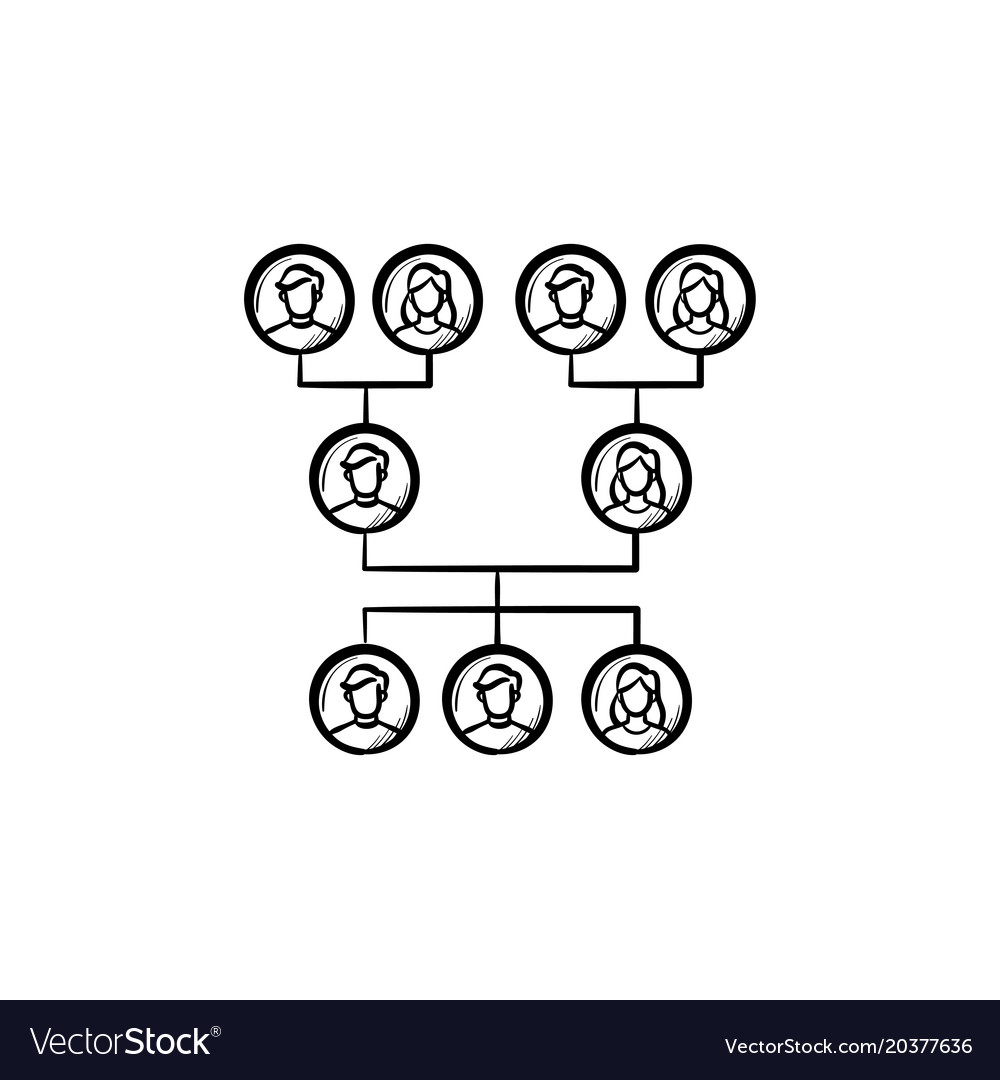 Family genealogical tree hand drawn sketch icon