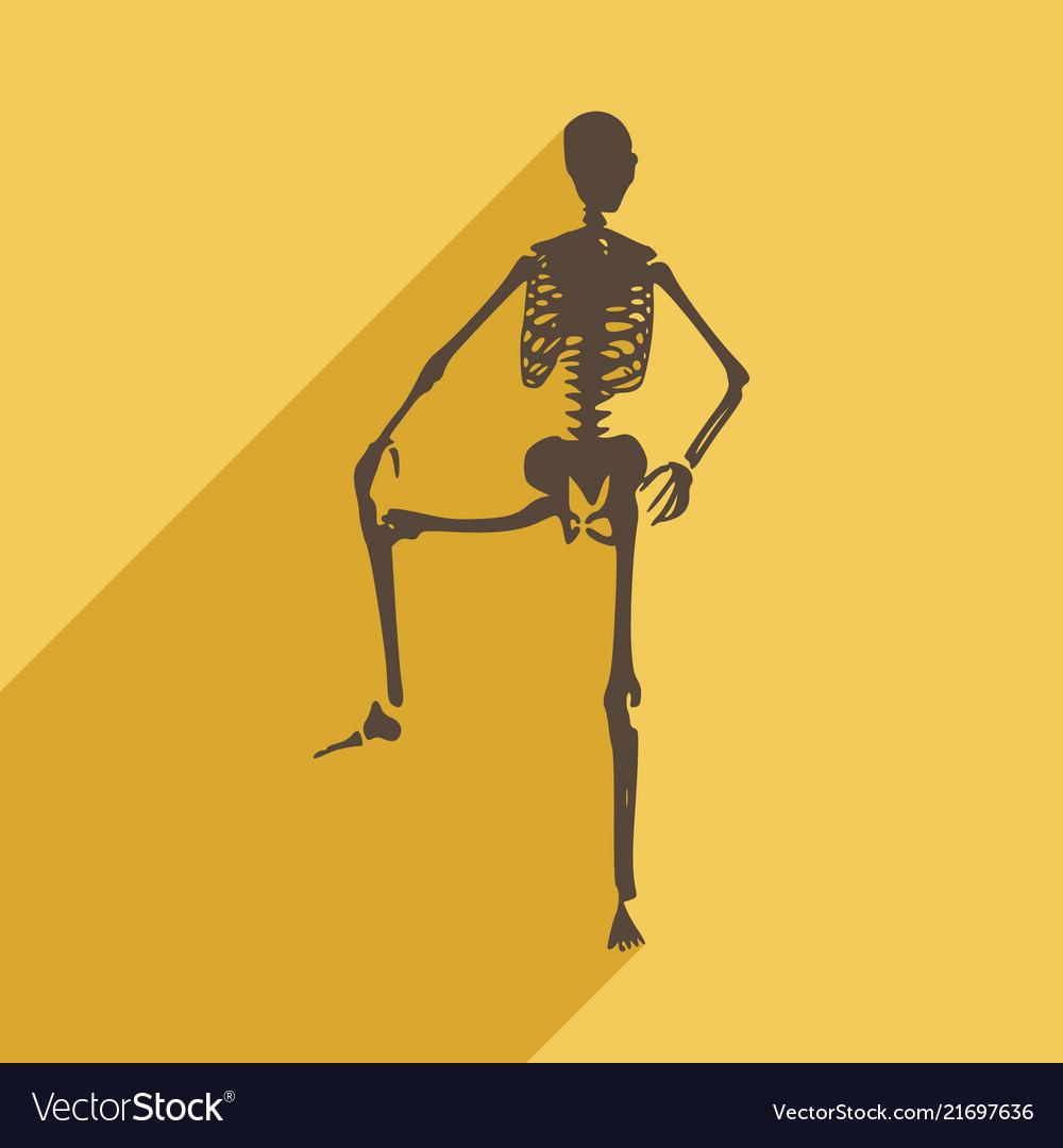Halloween human skeleton