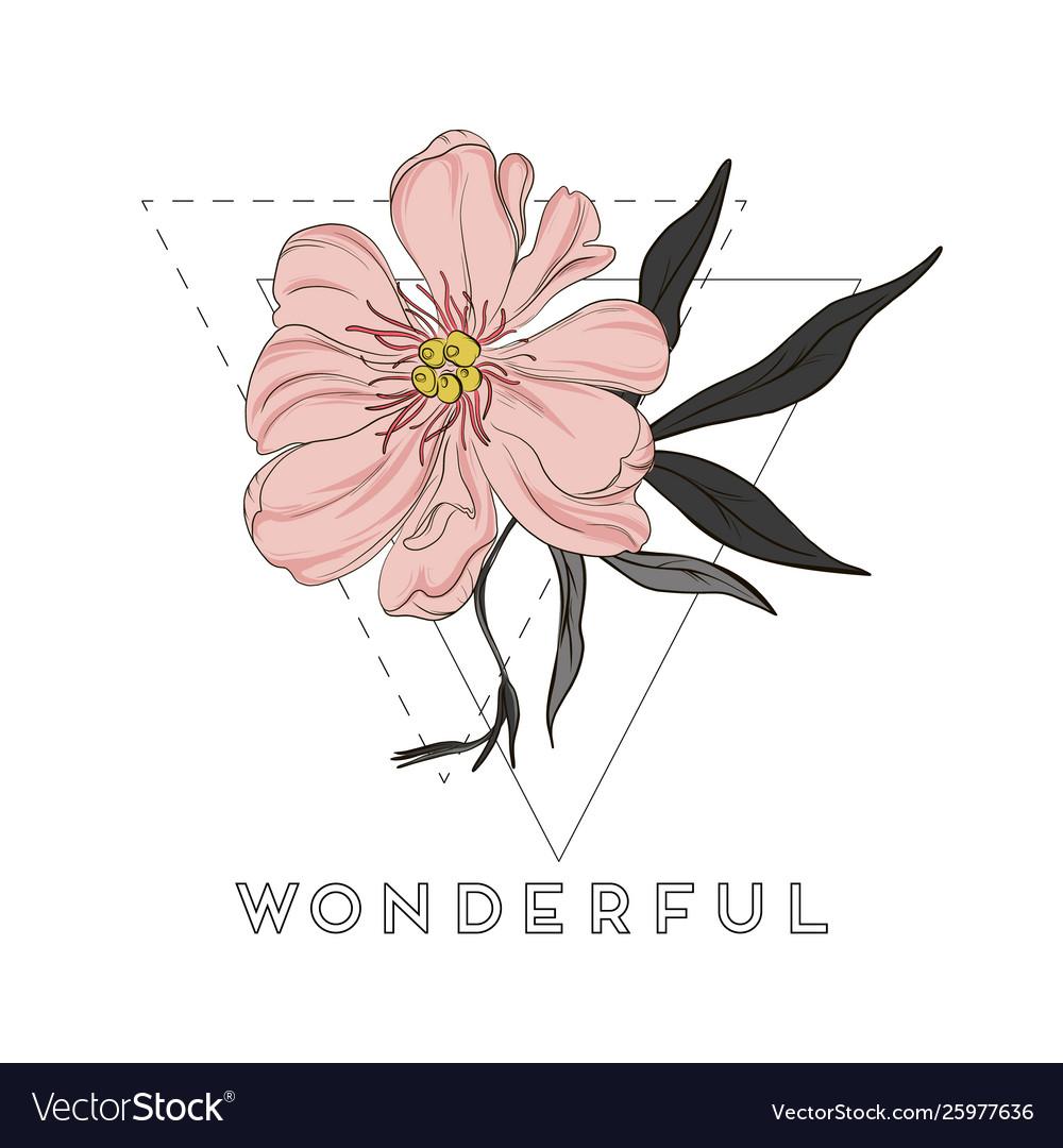 Hand-drawn peony flowers drawings beautiful