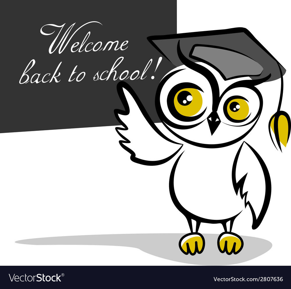 Owl and a blackboard isolated on white background