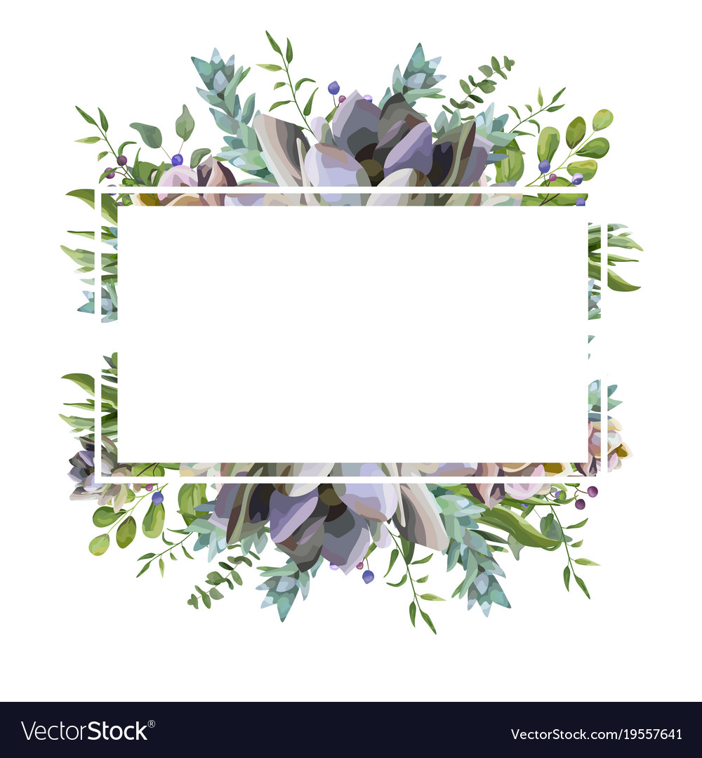 card design with succulent cactus frame border vector image. Black Bedroom Furniture Sets. Home Design Ideas