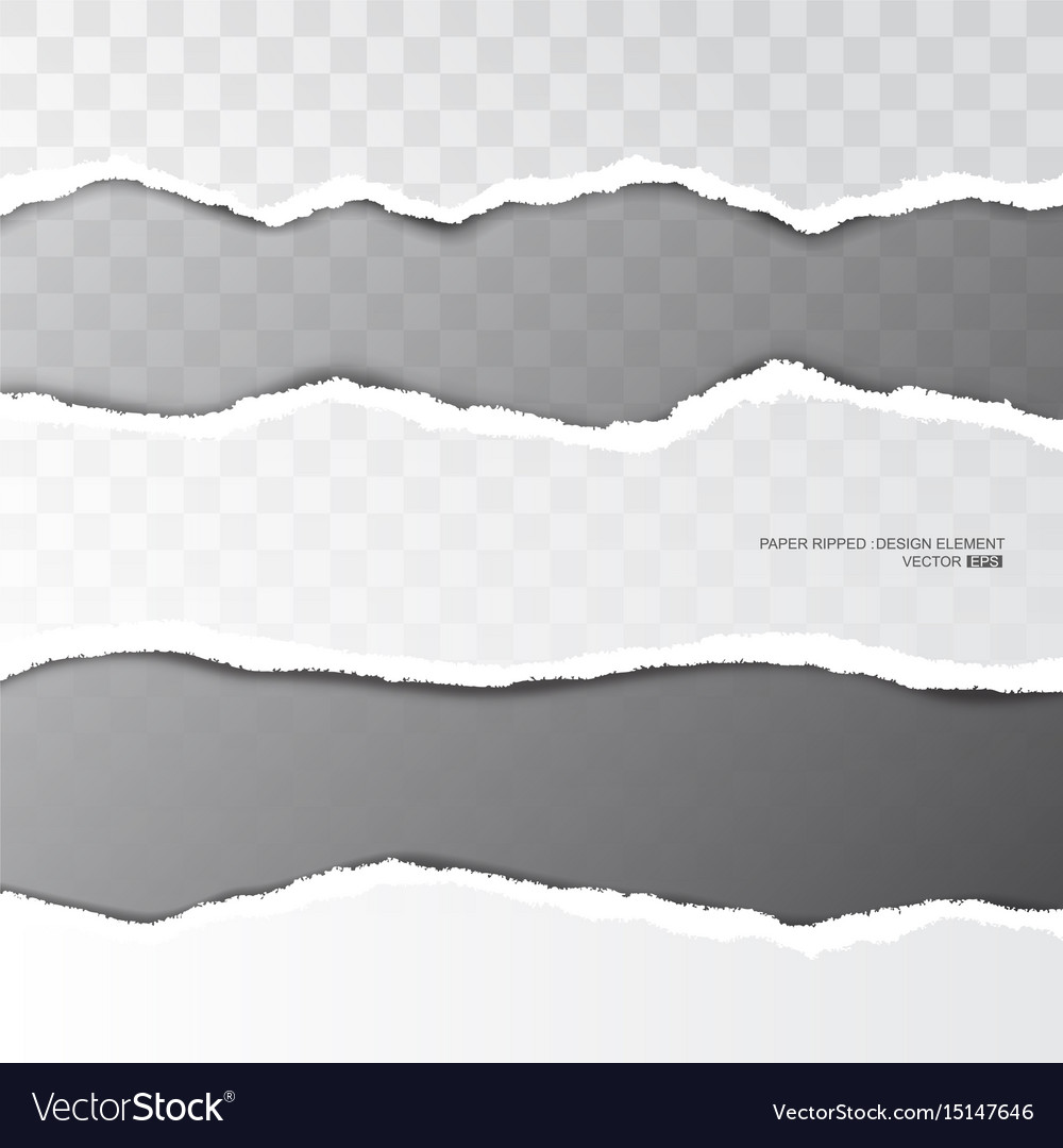 Ripped paper torn stripe on transparent background