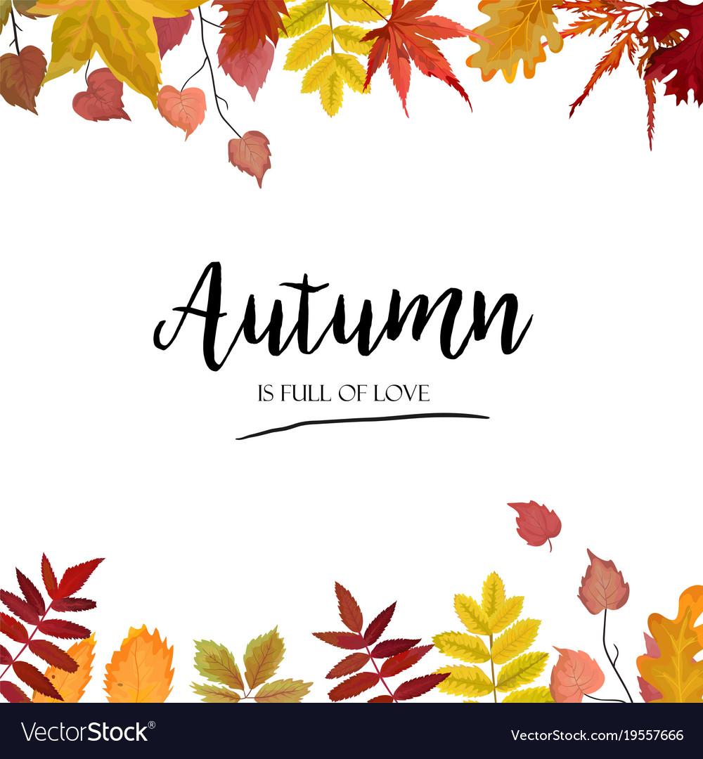 floral autumn season card design with leaf border vector image