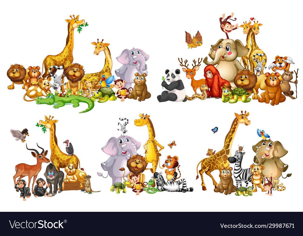 Set wild animals in groups on white background